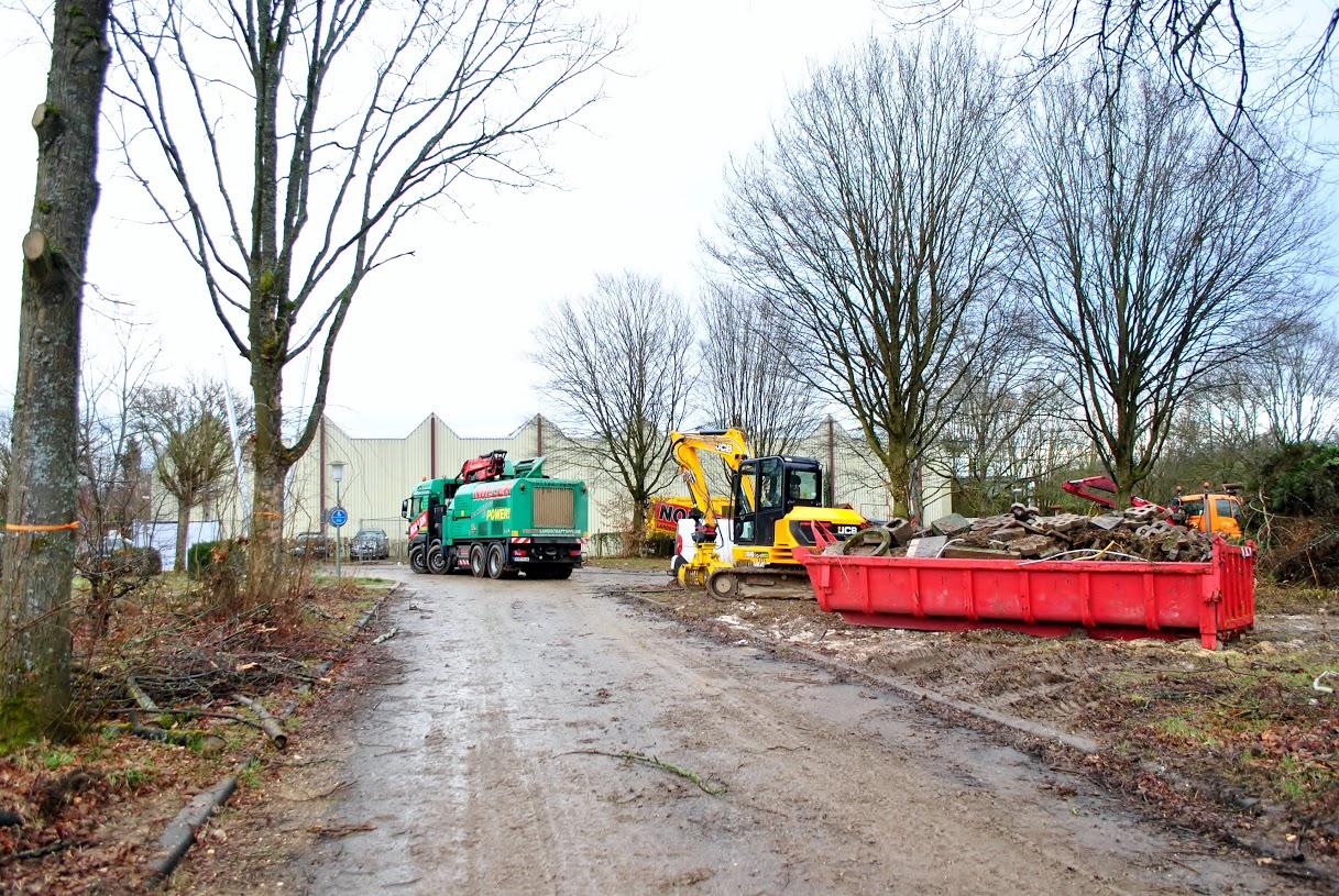 Fertigstellung der Aufräumarbeiten auf dem ehemaligem Campingplatz des Klosterparks