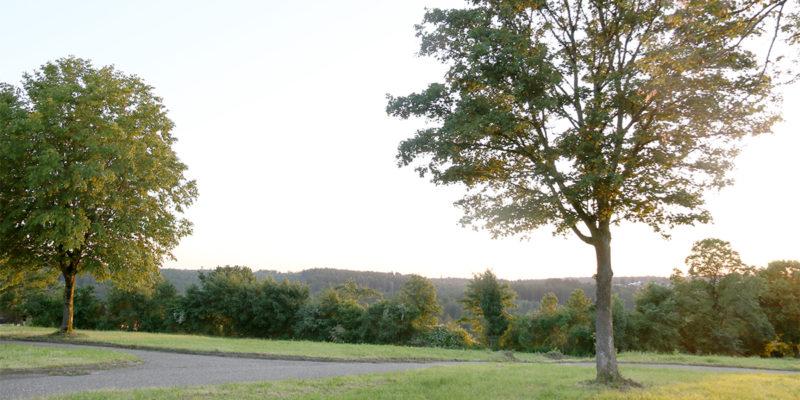 2019-06_Klosterpark-Adelberg_Tag-der-offenen-Tuer_024